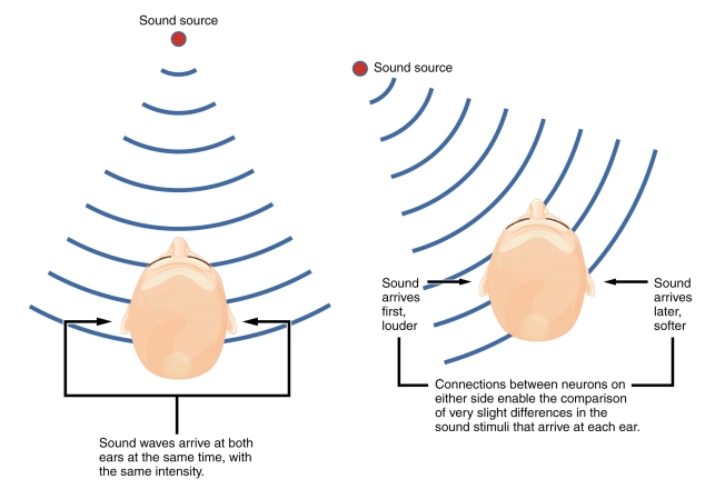 The picture shows sound sources that are placed at different locations around a head.