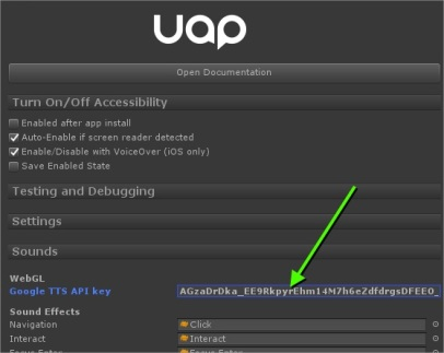 UAP plugin settings showing an input field asking to insert the Google API key.